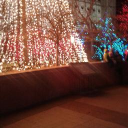 dpctwinklelights