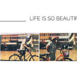 life beautiful phonephotography