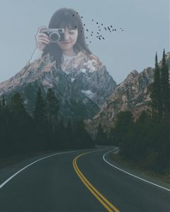 freetoedit road emptyness creativity birds
