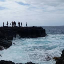 whalewatching hawaii ocean vacationmemories summer