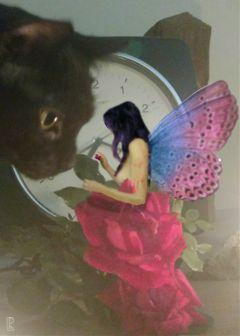 fairy beuatiful girl blackcat rose